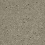 SAL-115_Grey Concrete